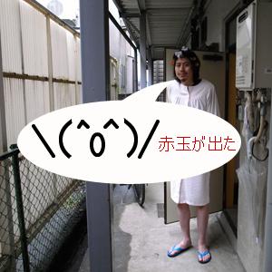 Neta_036_cocolog_oekaki_2010_05_05_