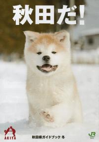 秋田県ガイドブック 冬